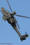 AAC Apache display 2011 #6