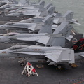 Rows of Hornets