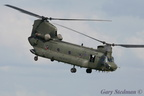 Chinook display