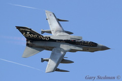 Waddington role demo #3