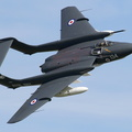 Sea Vixen display at Duxford #5